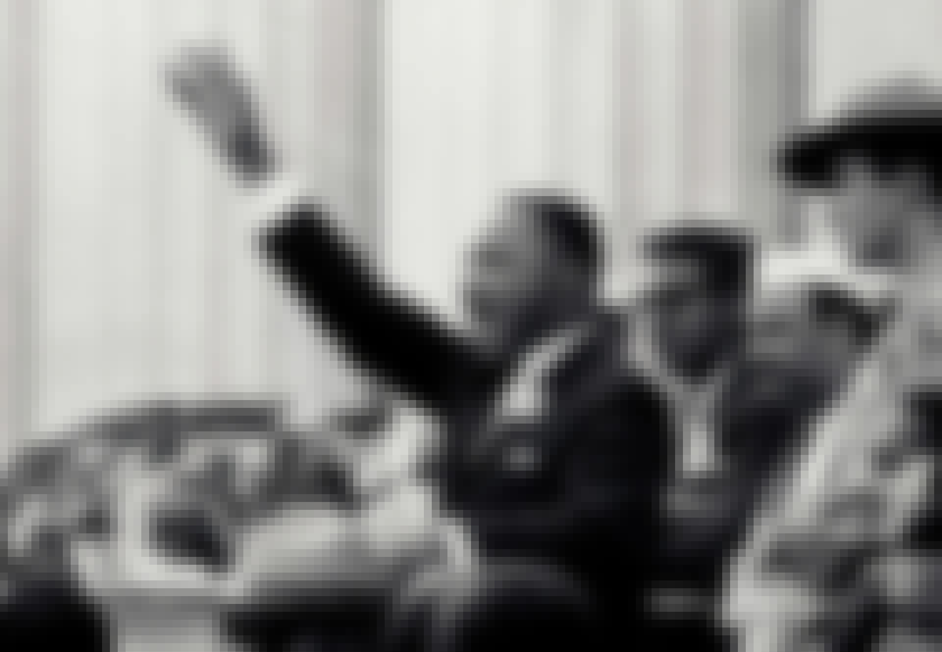 Martin Luther King holder tale