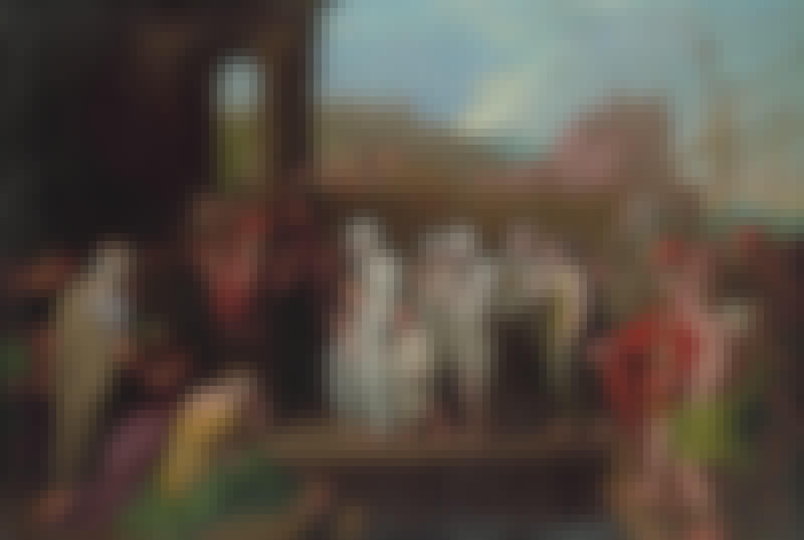 Caligulas mor med urne