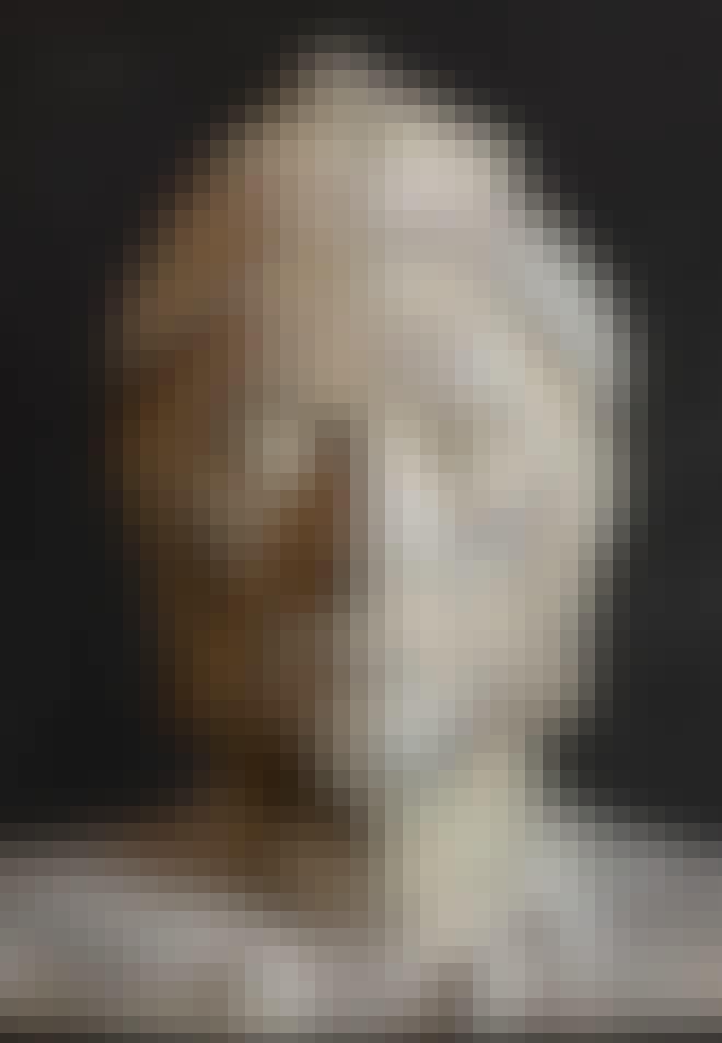 Dante Alighierin muotokuva