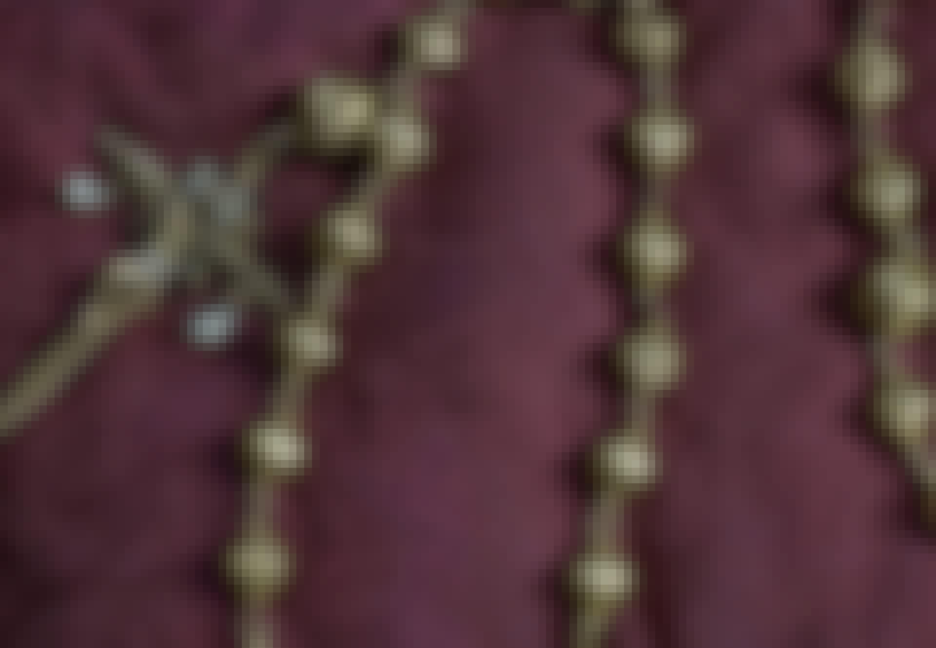 Gouden rozenkrans van koningin Maria
