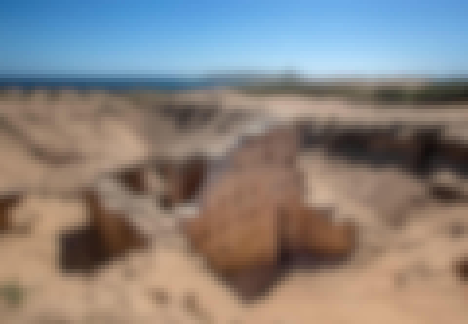 Ruinen etter at den ble gravd ut av en sanddyne