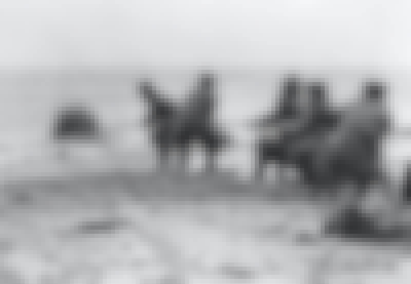Contactmijn wordt aan land gehesen, Tweede Wereldoorlog.