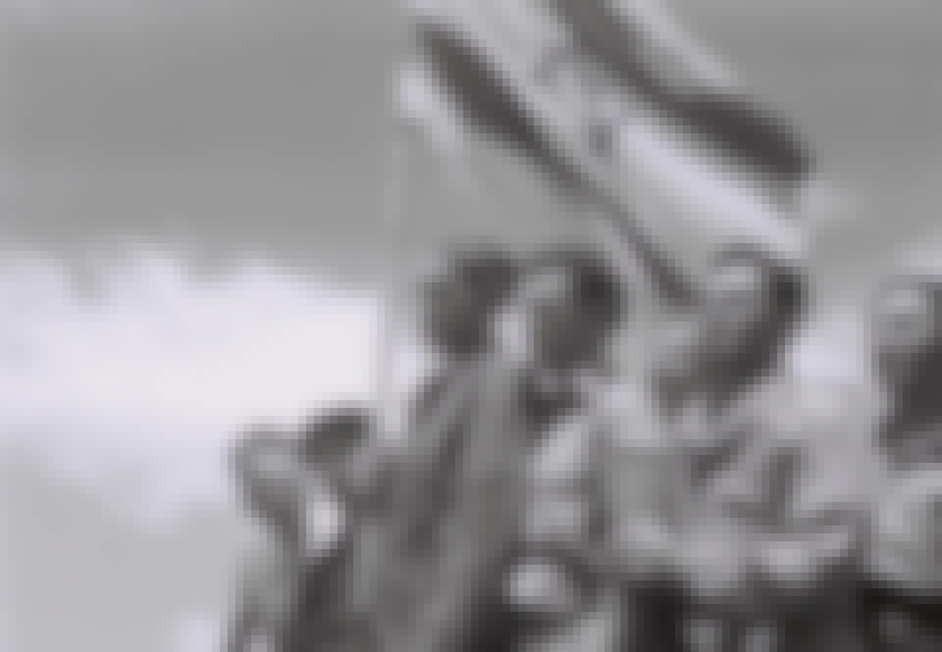 Kz-fanger med israelsk flagg
