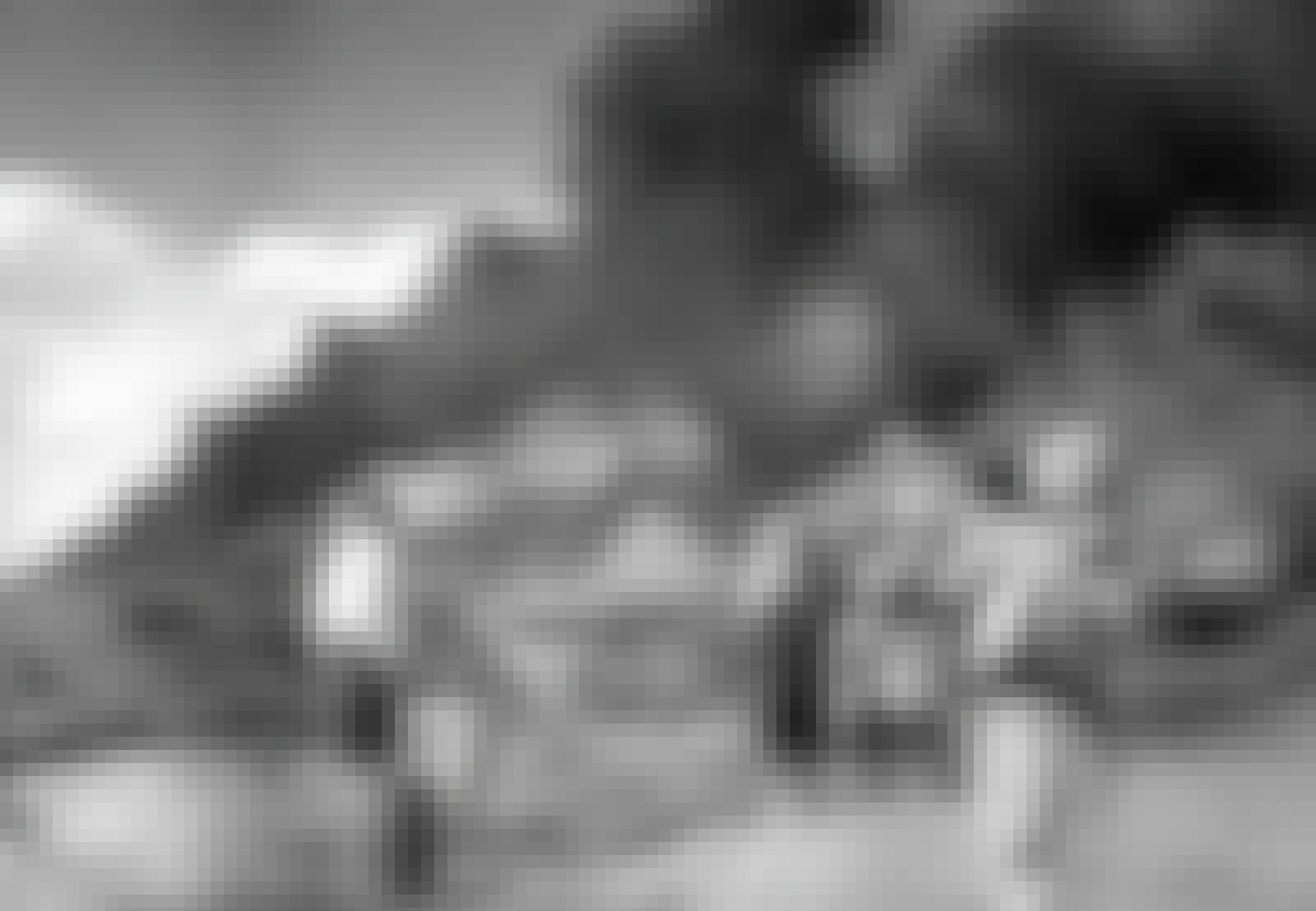 Neuvostojoukot polttavat ukrainalaisen talonpojan peltoja.