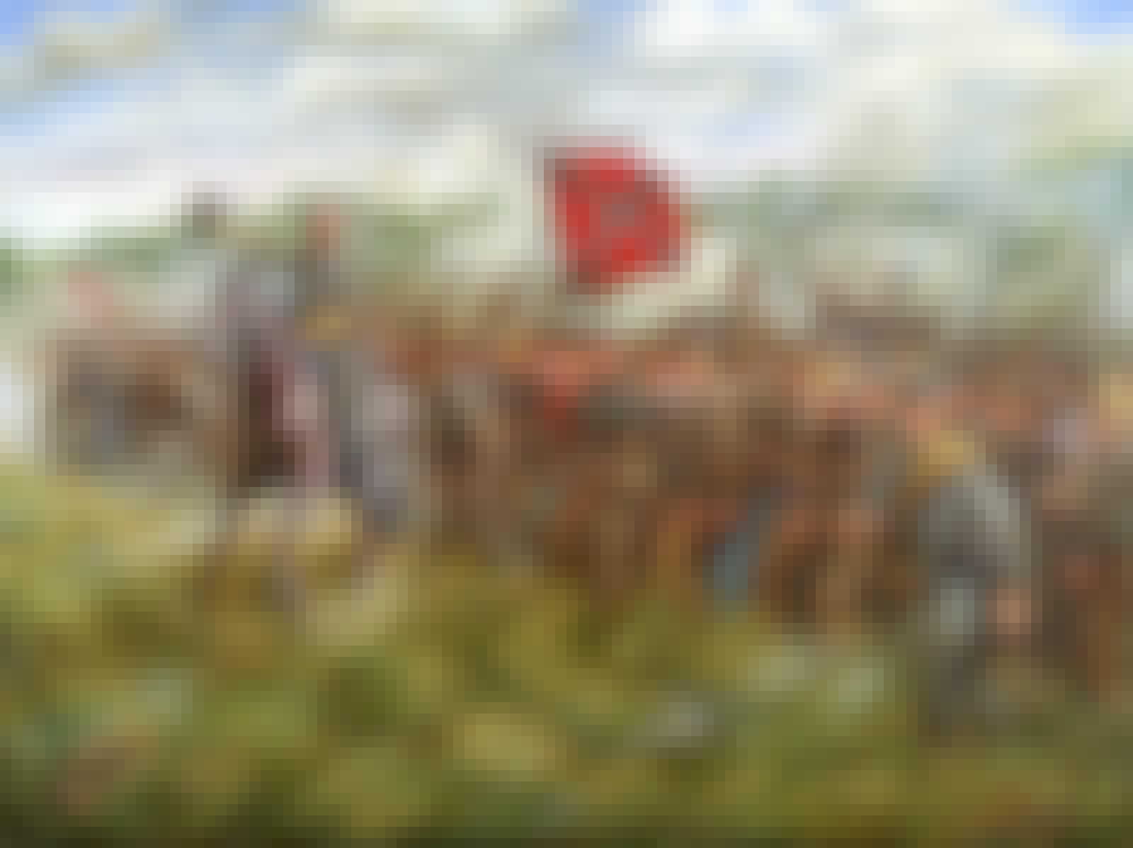 Robert E. Lee fører hæren an
