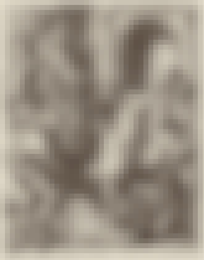 Maalaus kuumakidutuksesta, jossa pronssihärkä on tulen päällä