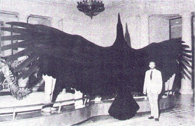Megalodon had tanden van 15 cm en wordt wel een locomotief met een bek vol slagersmessen genoemd.