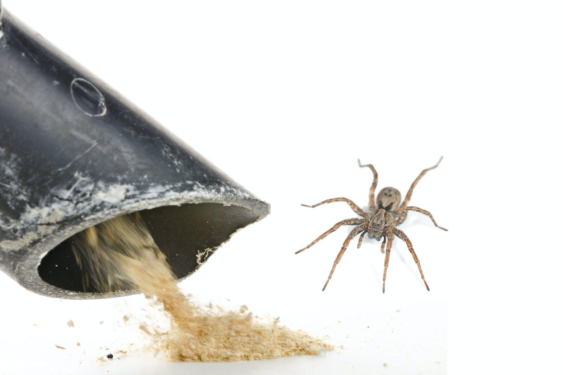 Spider vacuum