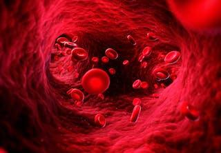 blod bloddråbe