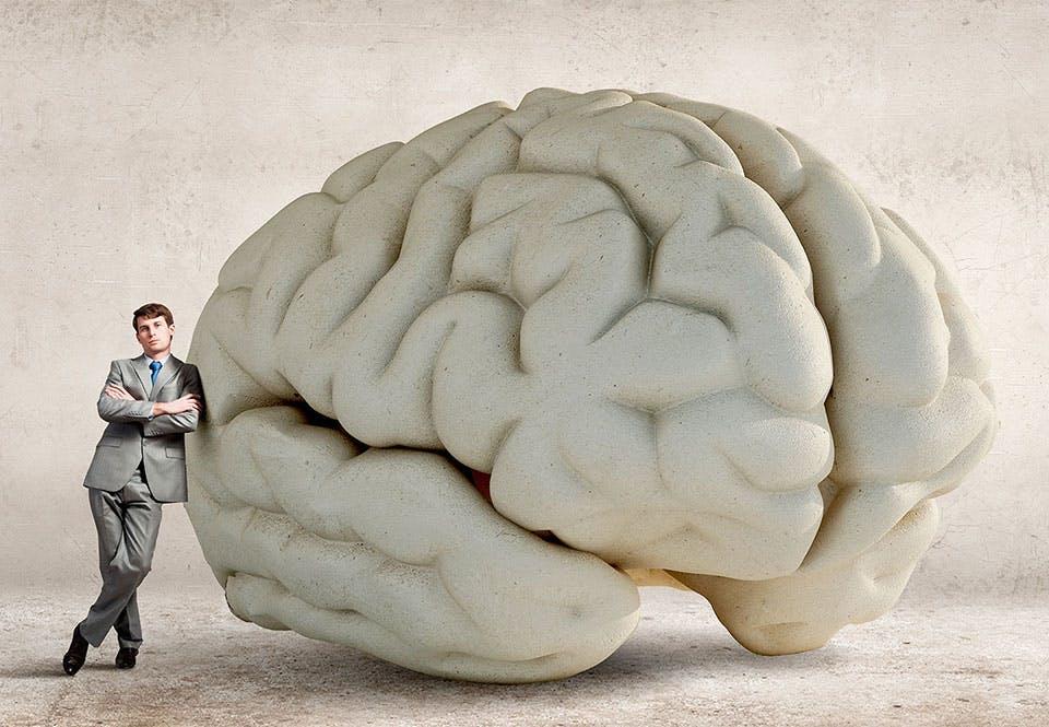 myter om hjernen