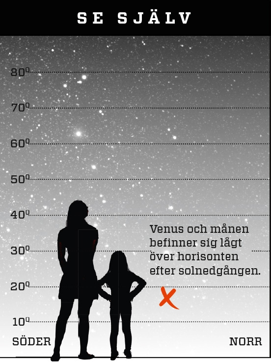 5 stadier av dating mars Venus