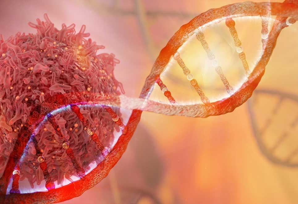 Kankercel – wat is kanker nou precies?