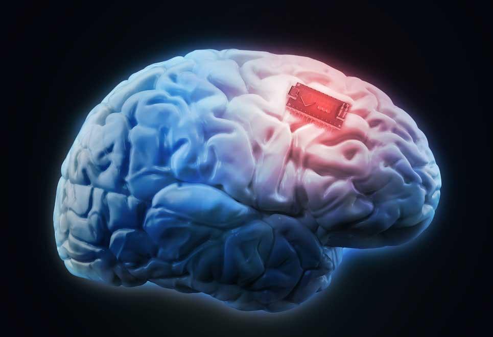 hjernen hukommelse
