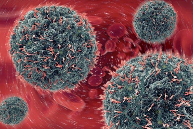 Antistoffer