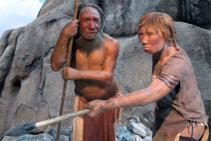 Fossilet gömde sig i El Sidrón-grottan, där rester från 13 neandertalare hittades under 1990-talet.