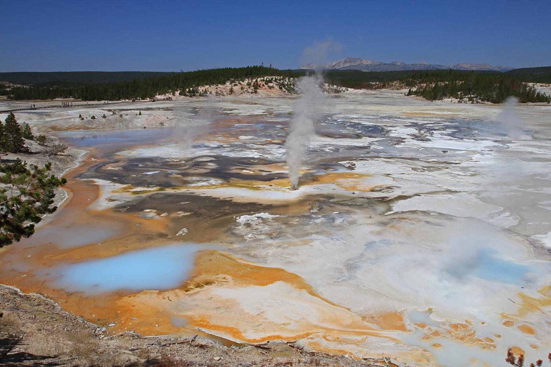 Norris Geyser Basin Yellowstone