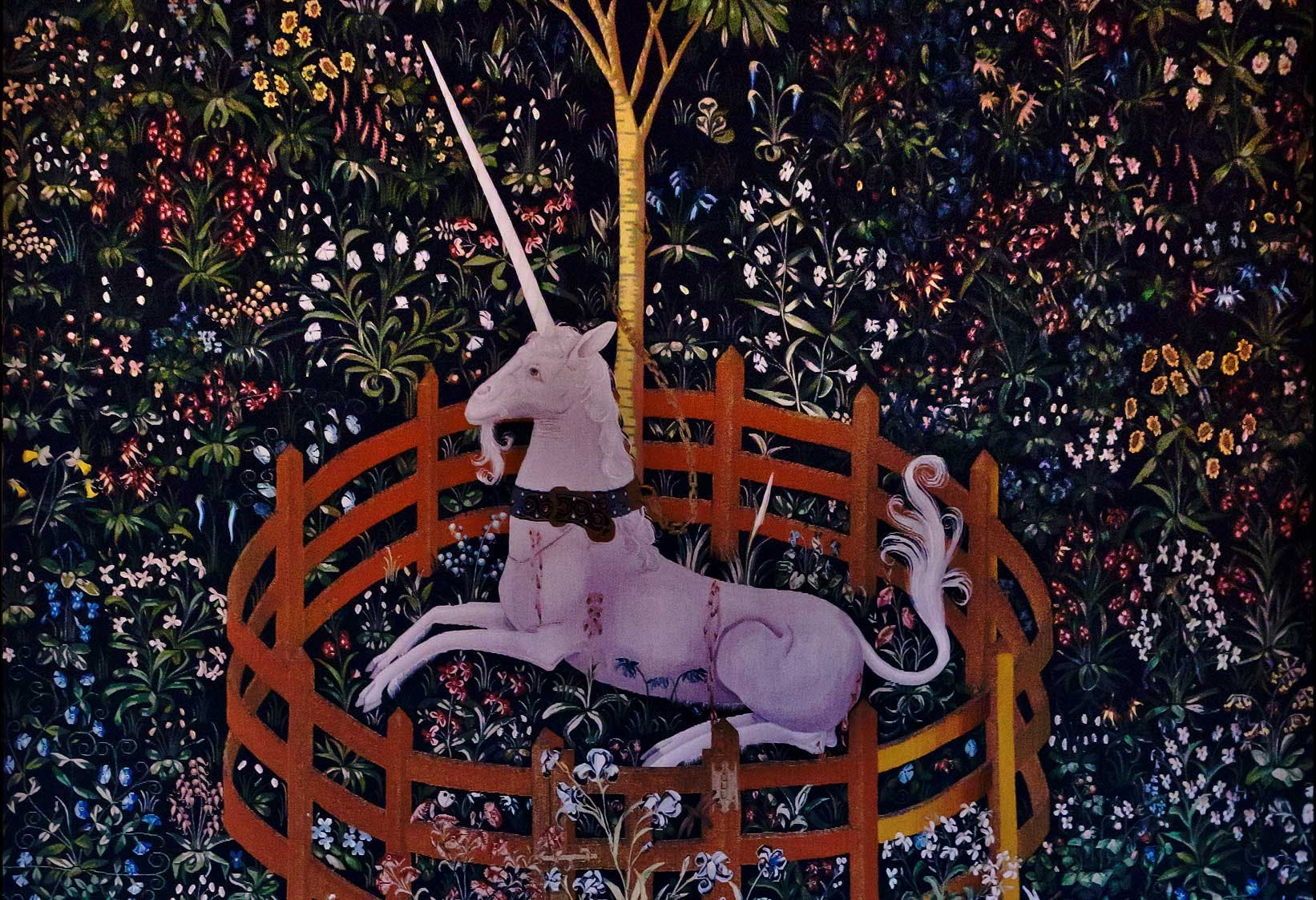 Enhörningen och horn