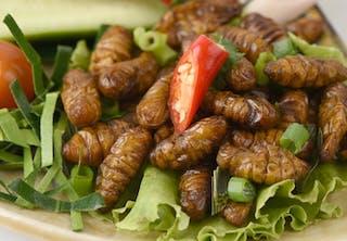 Insecten als voedsel - VN keurt ongedierte in voedselpiramide goed