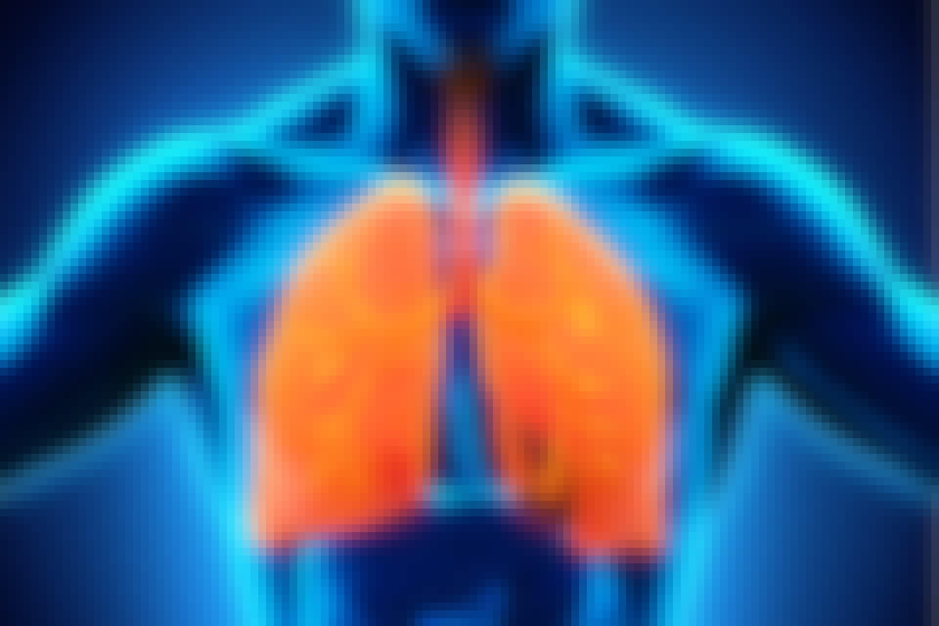 Onko keuhkojen koolla väliä?
