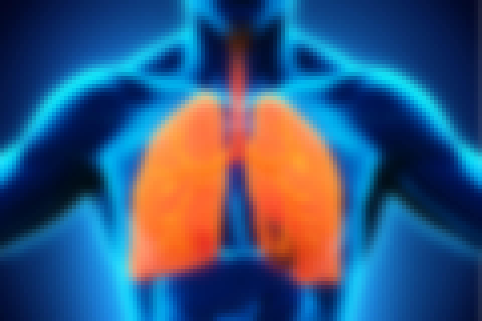 Er store lunger en fordel?