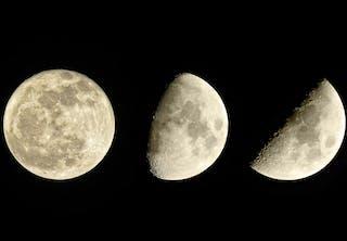 Månfaser