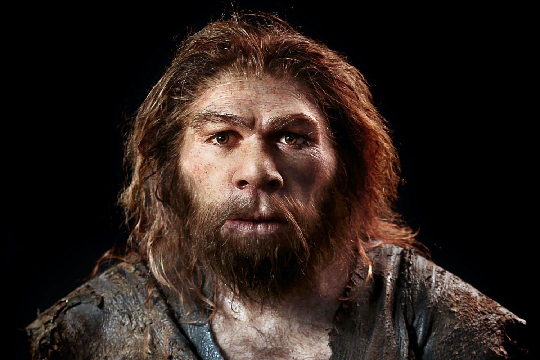 Hvorfor forsvandt neandertalerne?