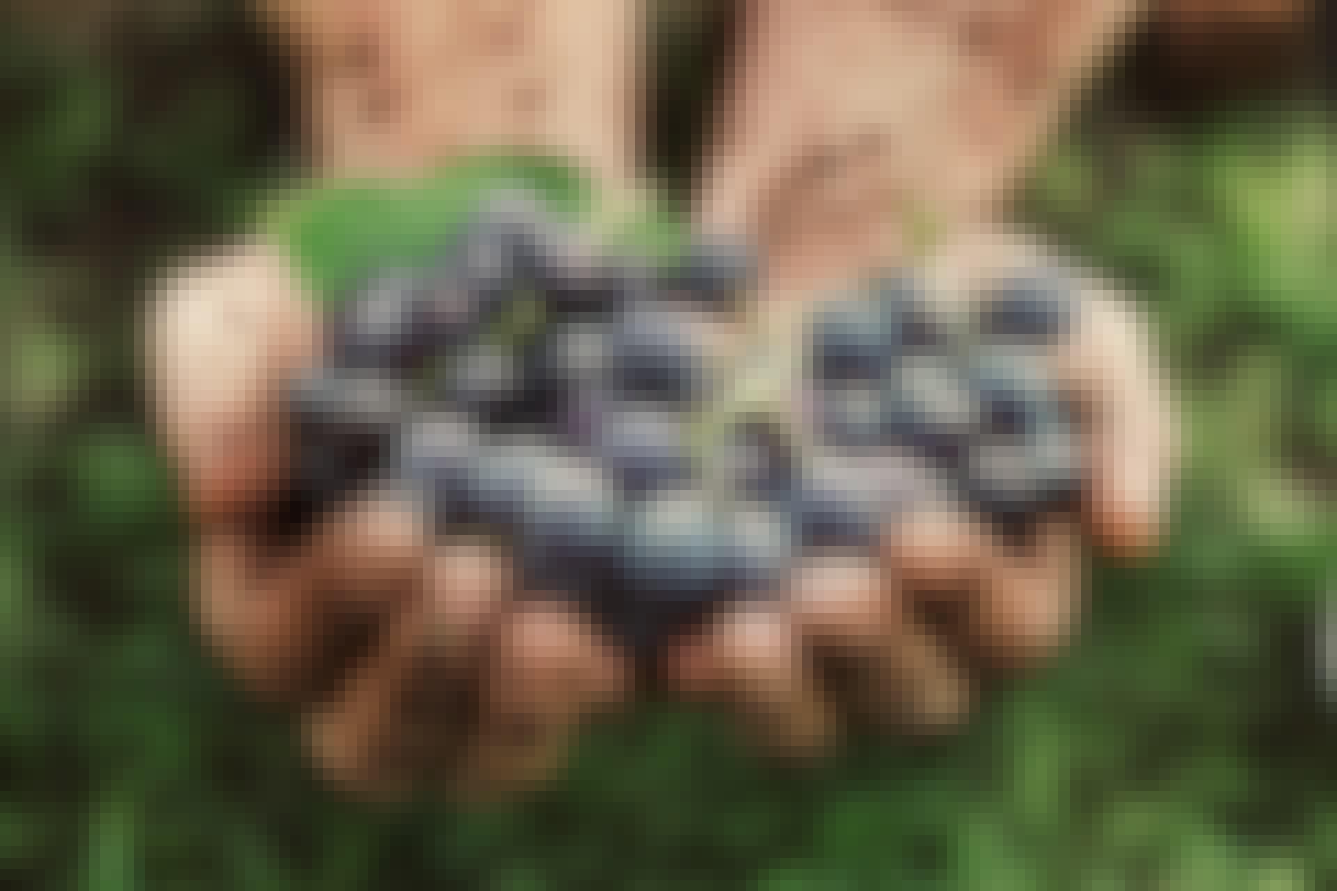 Hvordan laver man stenfri druer?