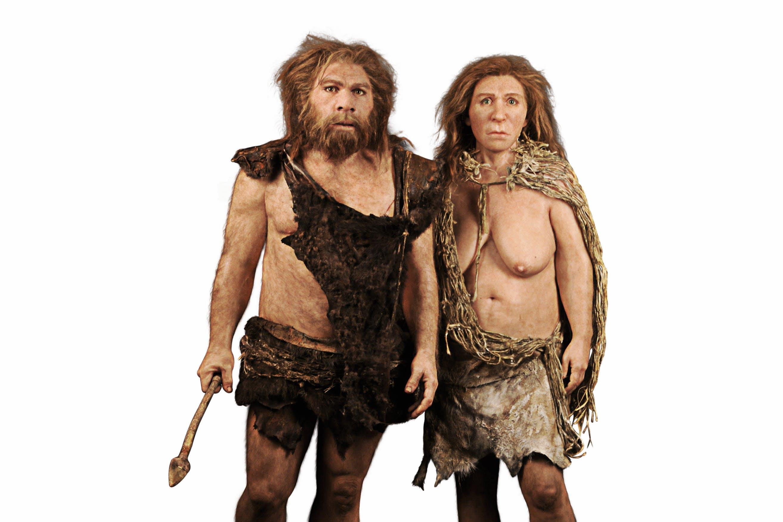 Derfor var sex med neandertalere vigtigt