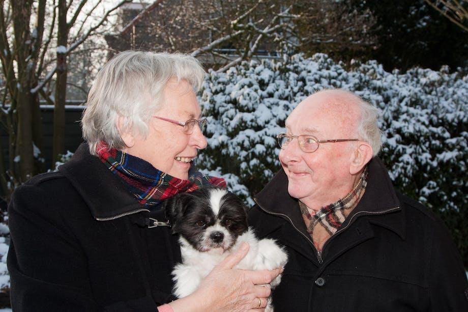 Hund med gamle mennesker