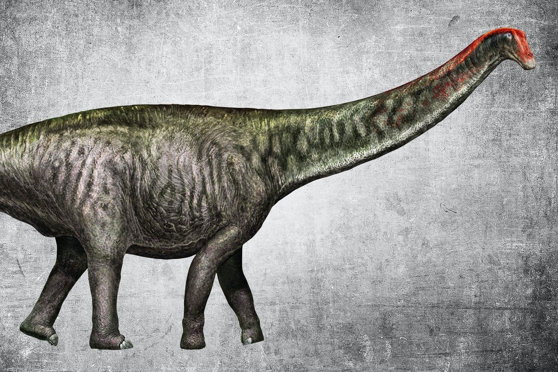 Comeback van de Brontosaurus