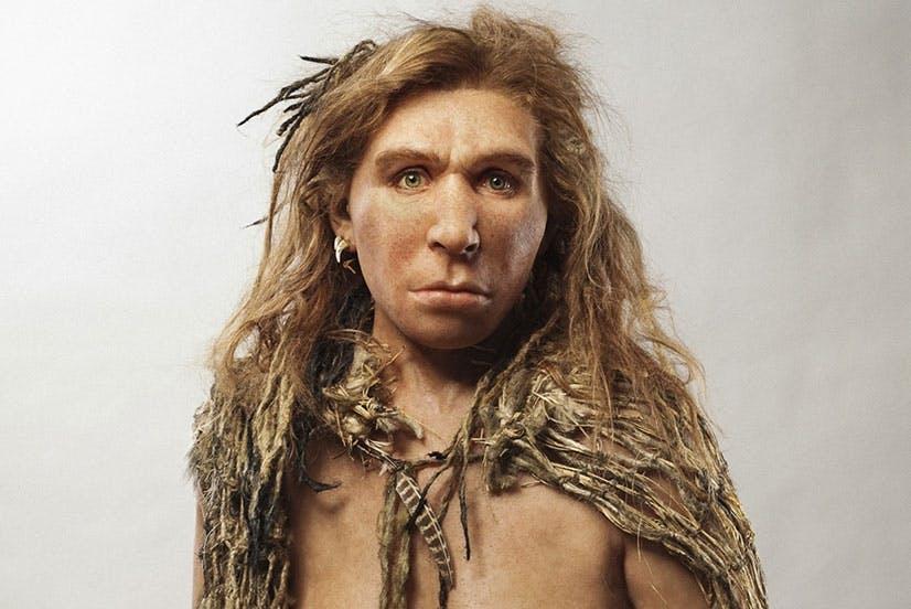 Olivatko neandertalilaiset älykkäitä?
