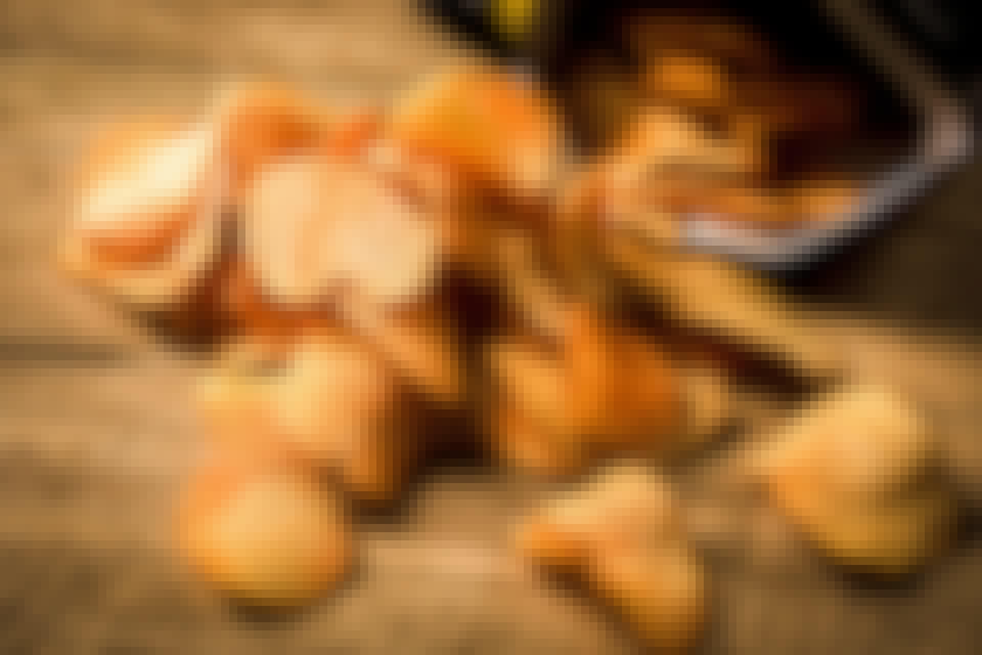 Chips in zak