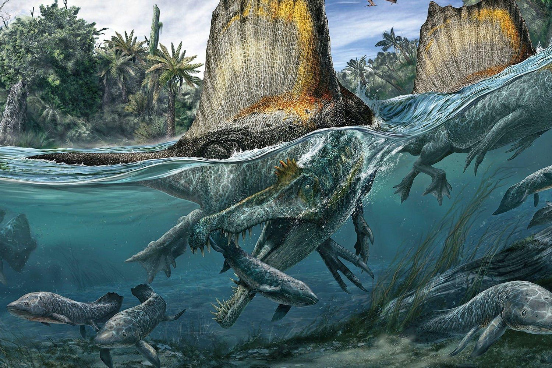 Spinosaurus jagade i vattnet