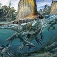 Spinosaurus jagede i vandet