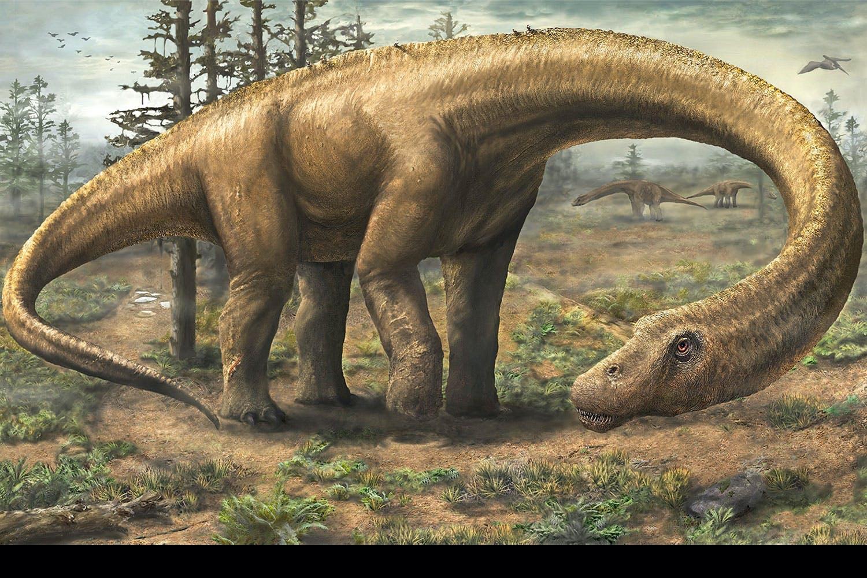 Dreadnoughtus dinosaurussen 2/2015