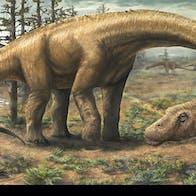 Dreadnoughtus dinosaur 1/2015