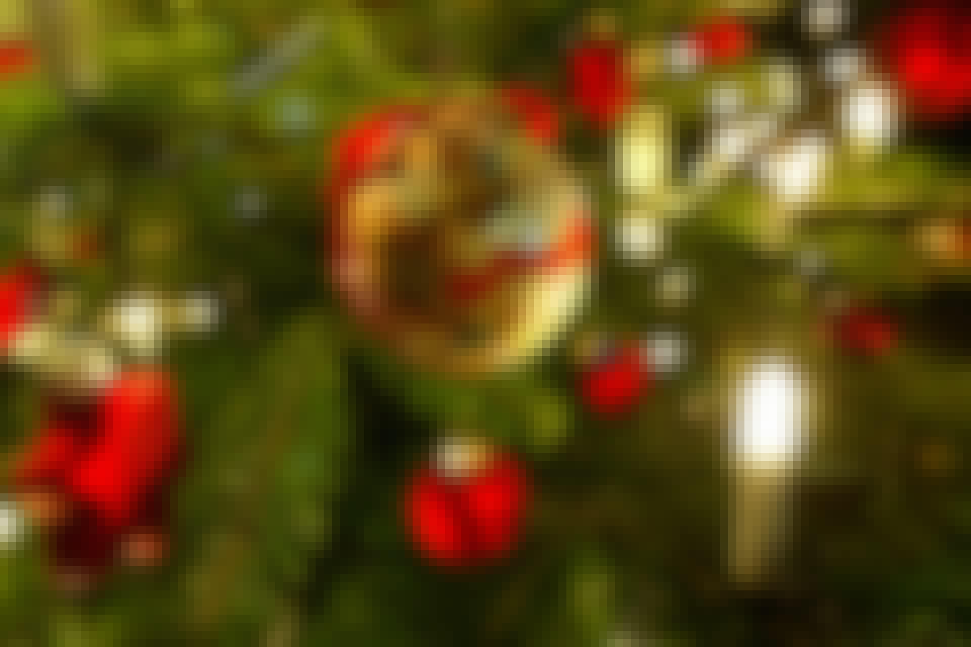 Juletræ 18/2014