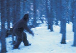 Yeti in the snow