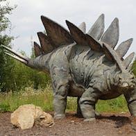 Dinosaur colour