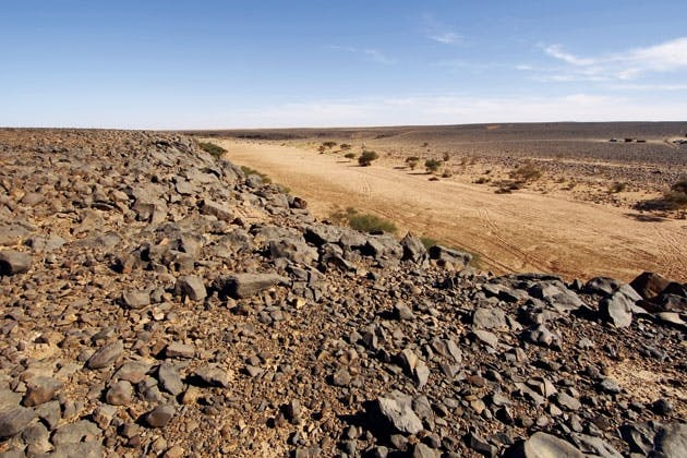 Reg in Sahara