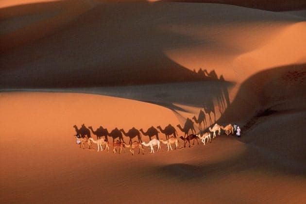 Erg in Sahara