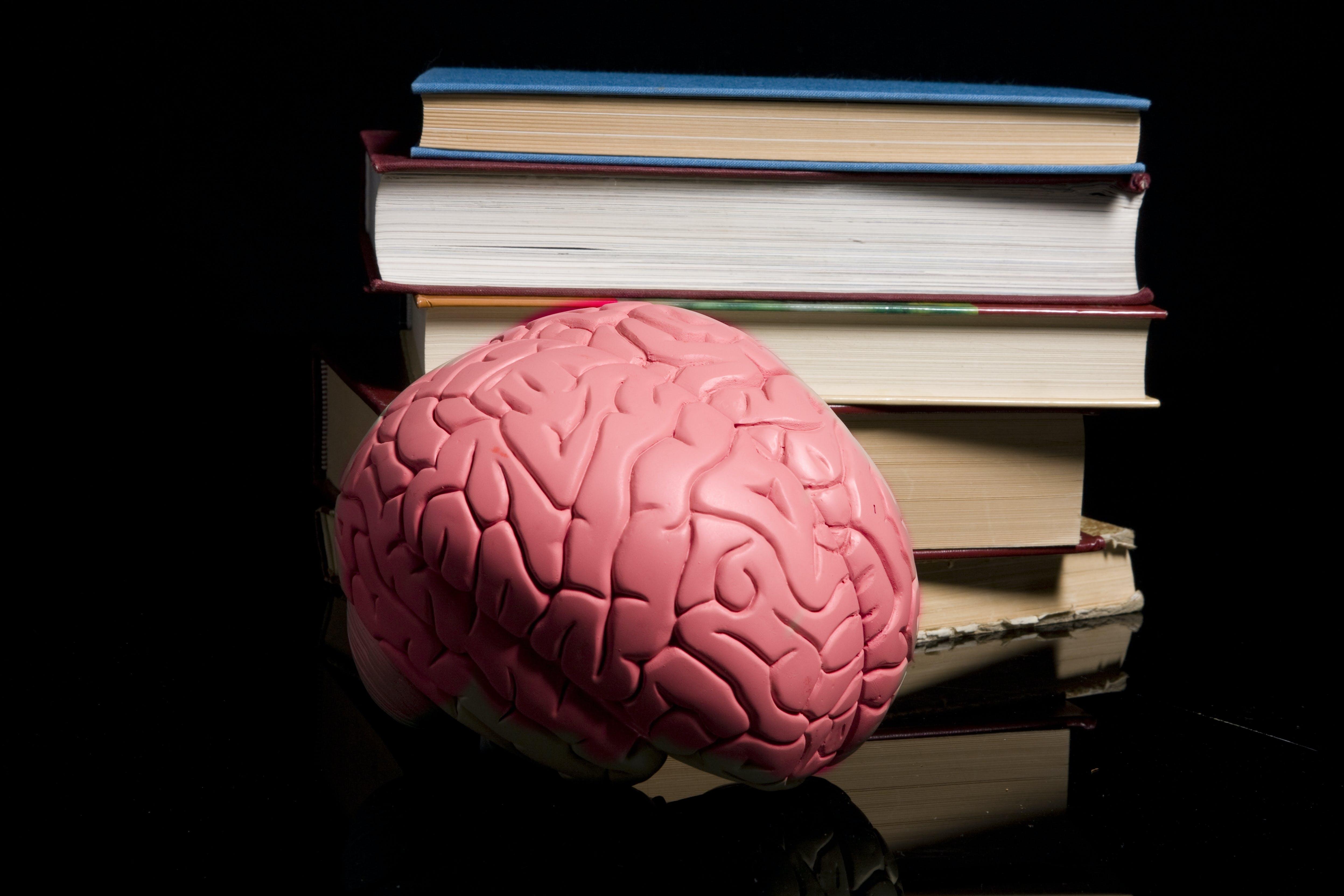 Brain and books