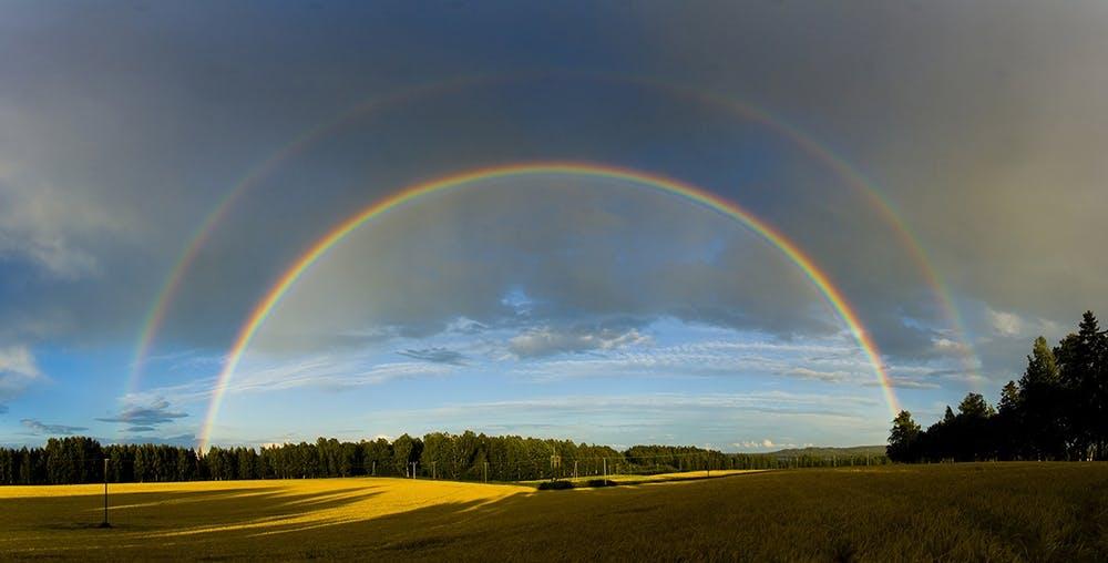 Sådan dannes regnbuen