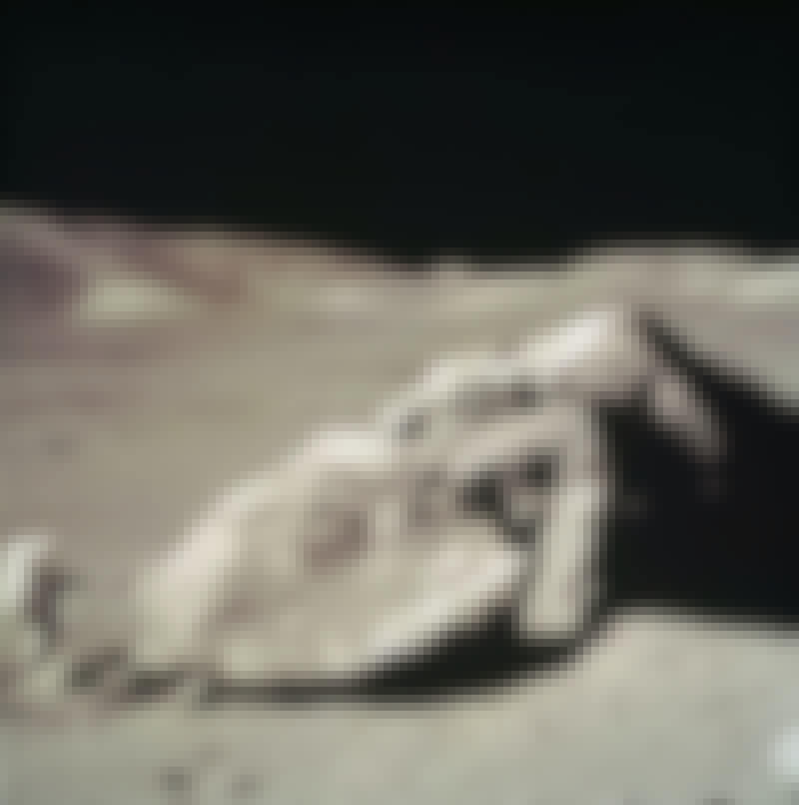 Schmitt by moon rock