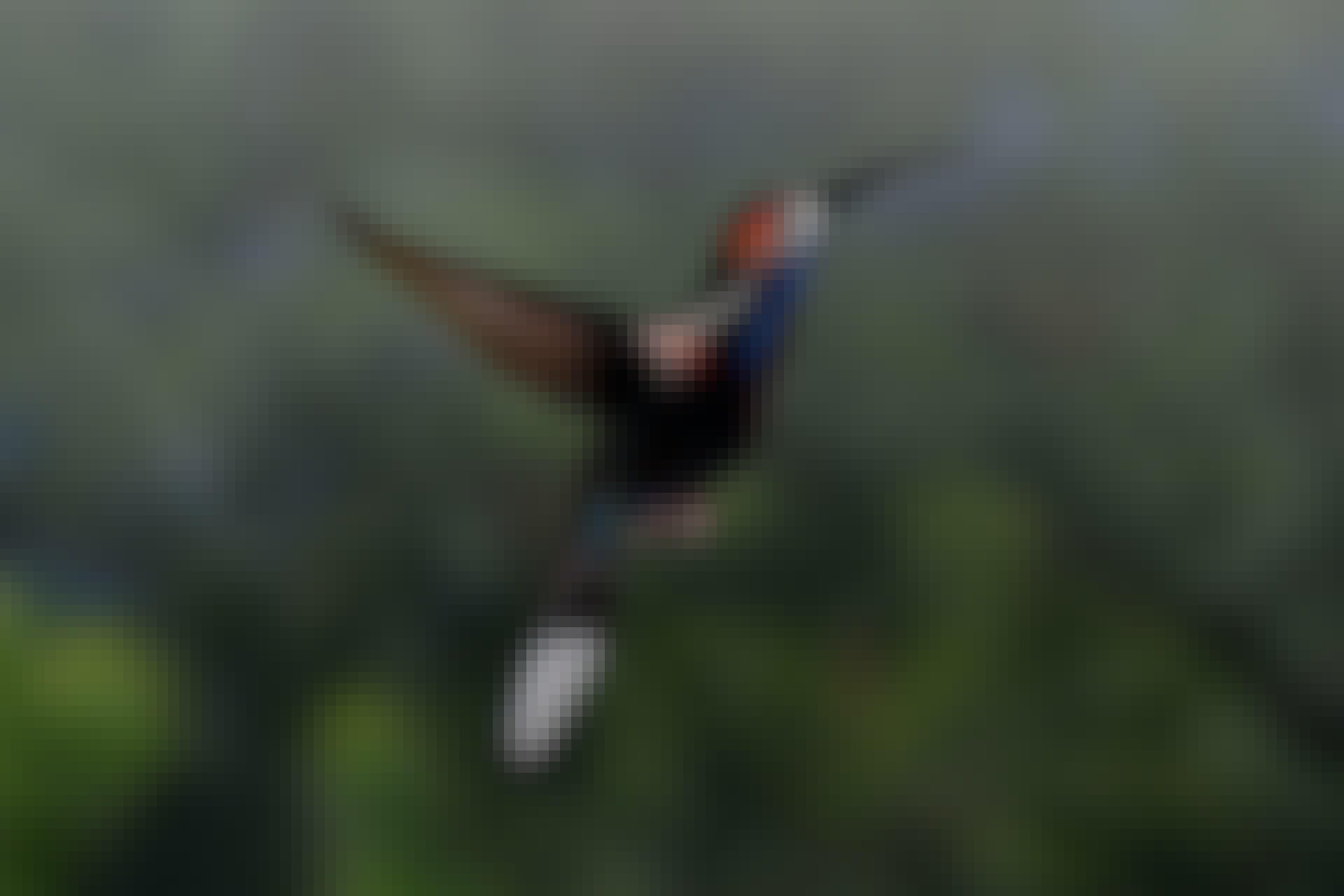 Kolibrin olkanivet