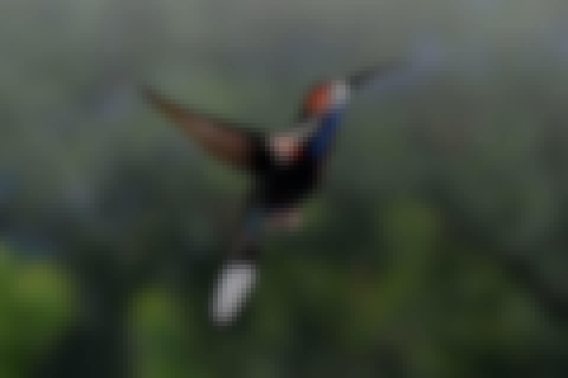 Kolibrins axelled