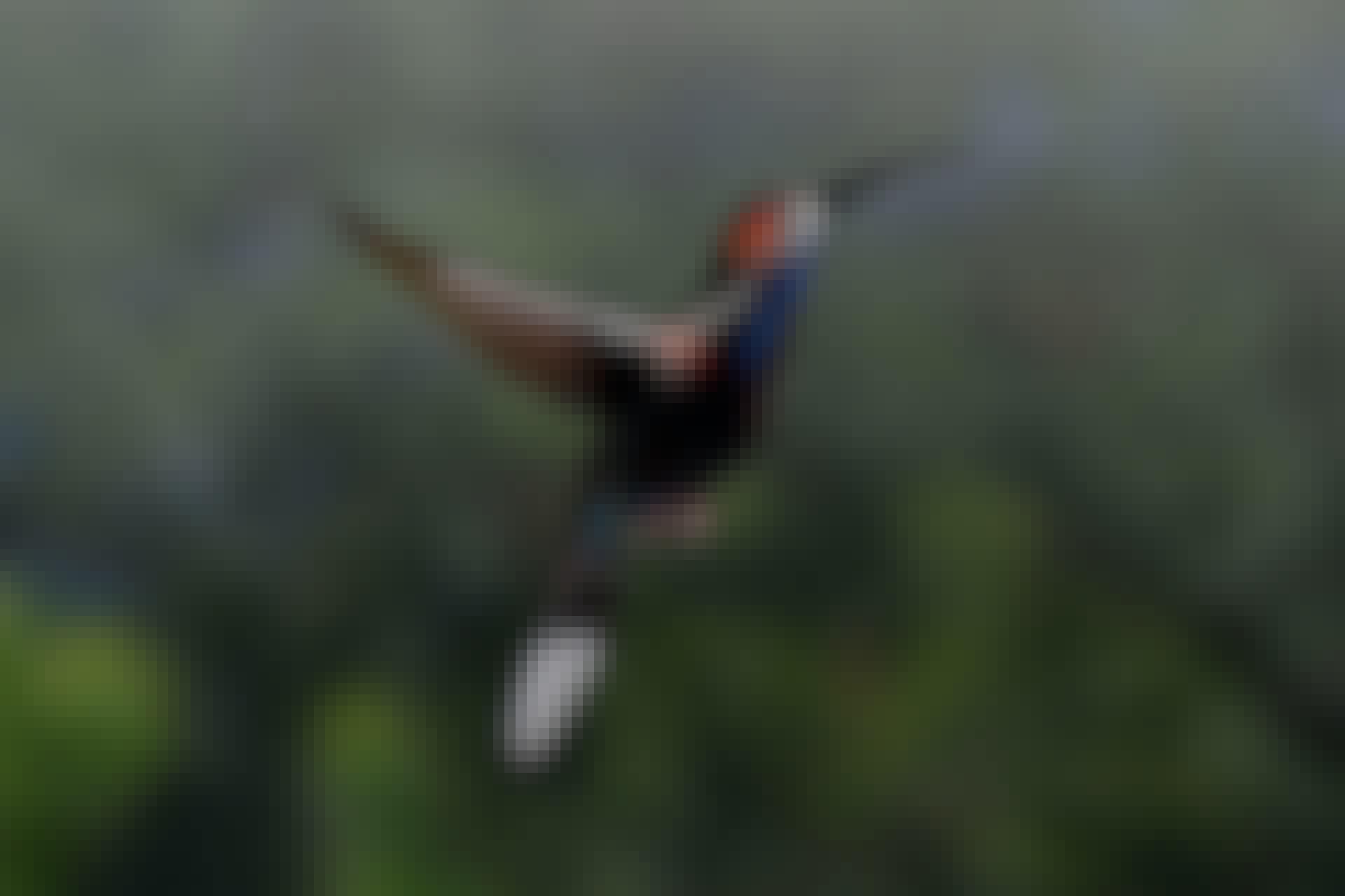 Kolibrin käsisulat