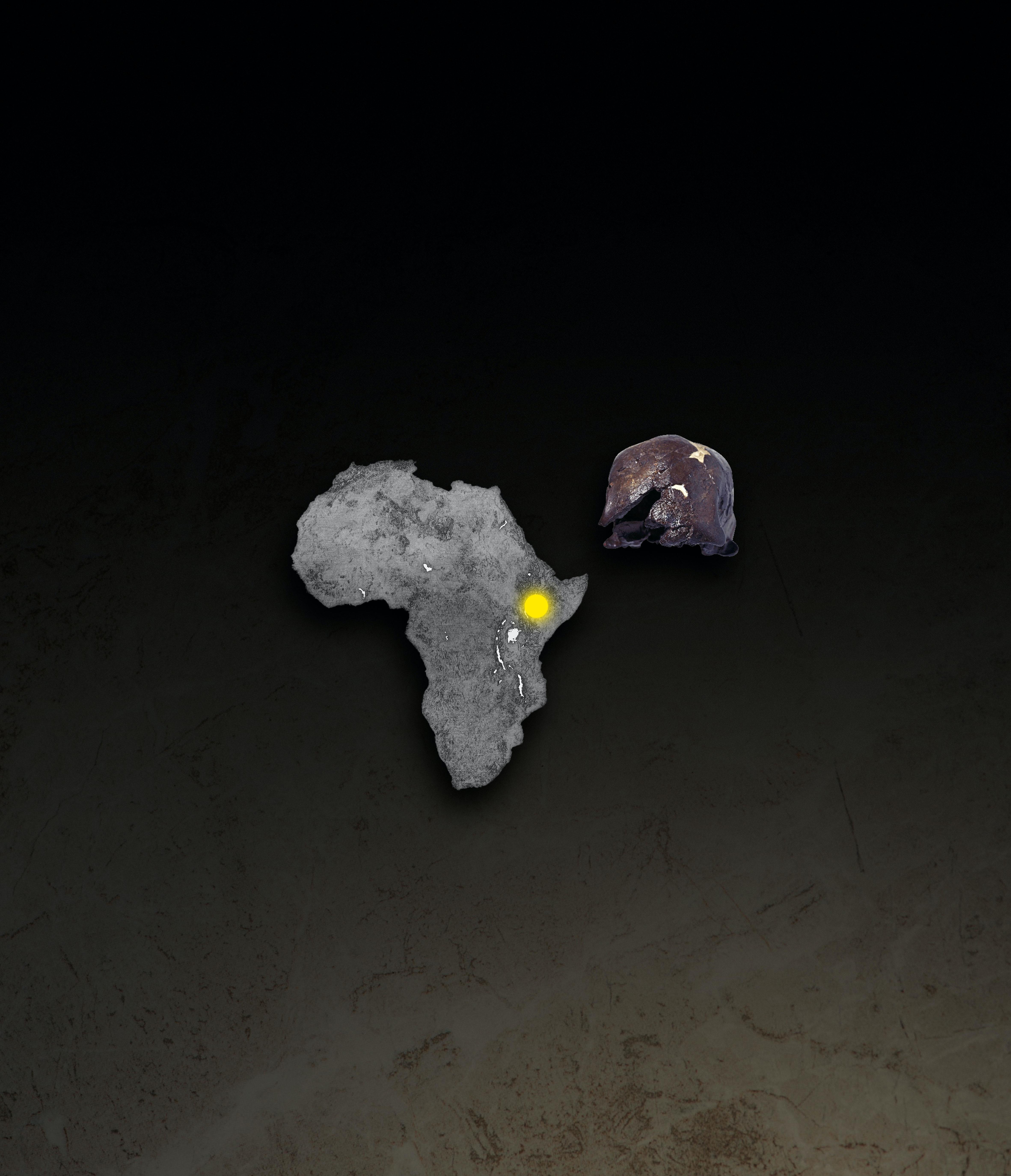Saharanpur dating tjeneste for vennskap