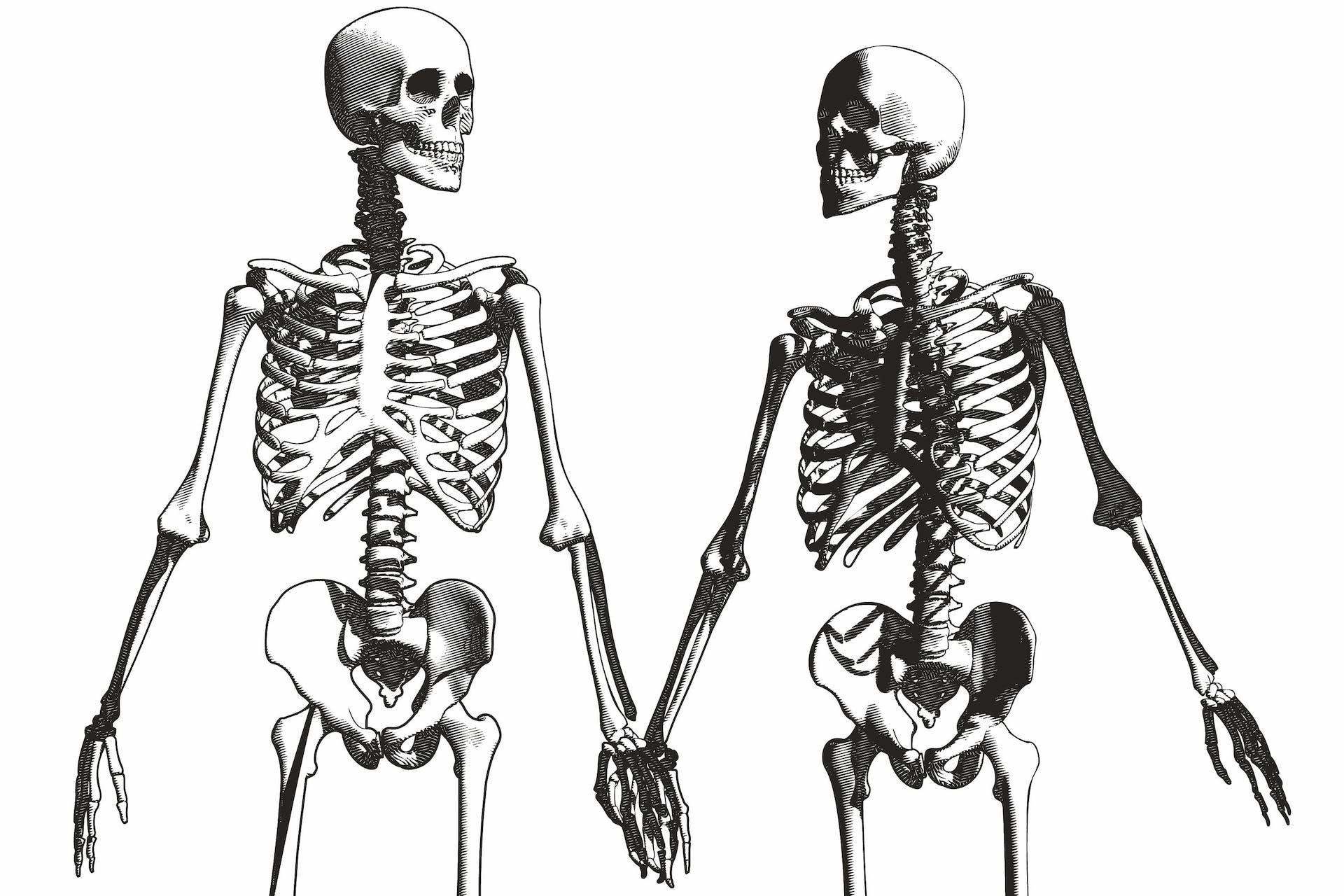 ribben menneske