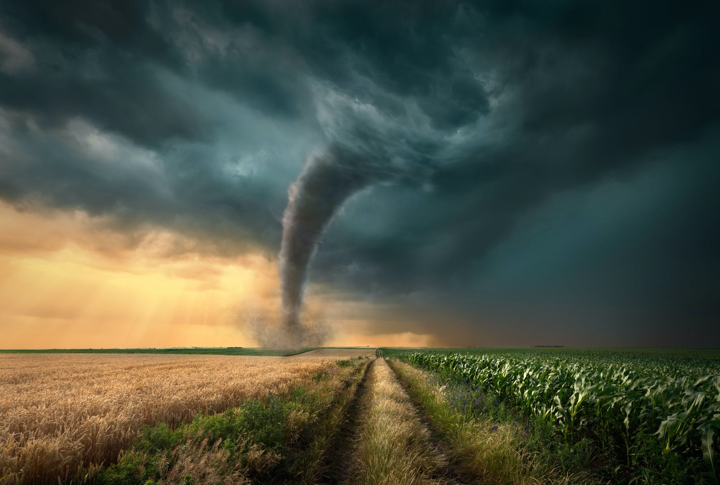 Tornado_værfenomen